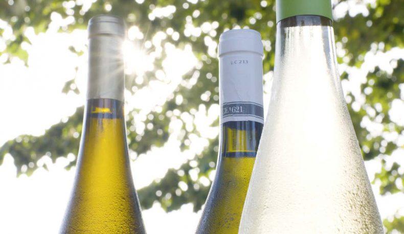 vinhos2